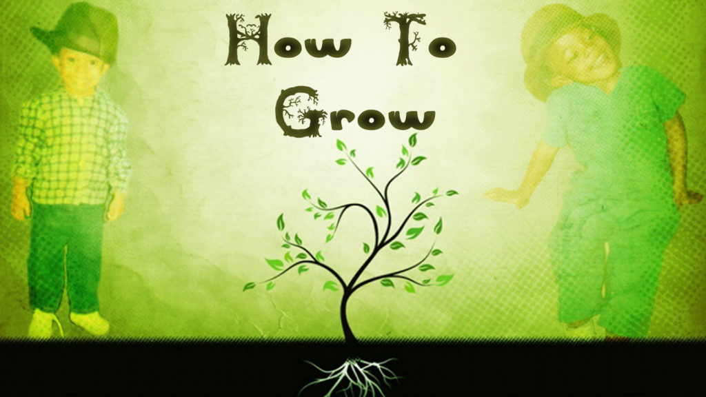how-to-grow-final